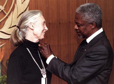 Campaña de reciclaxe de móbiles lanzada polo Instituto Jane Goodall